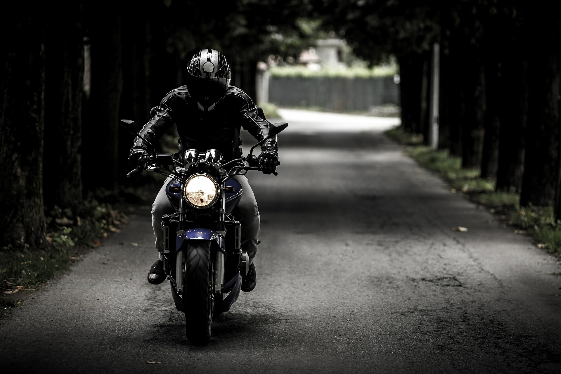 Biker on a wooded lane